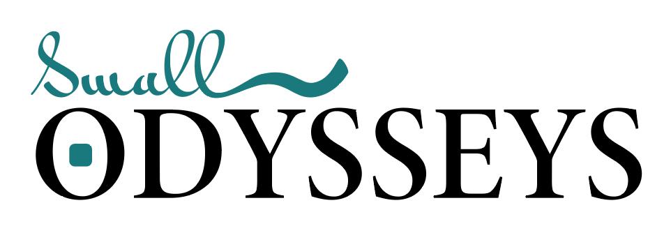 Small Odysseys